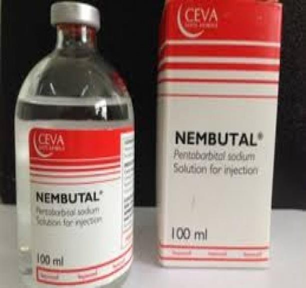 Nembutal for sale